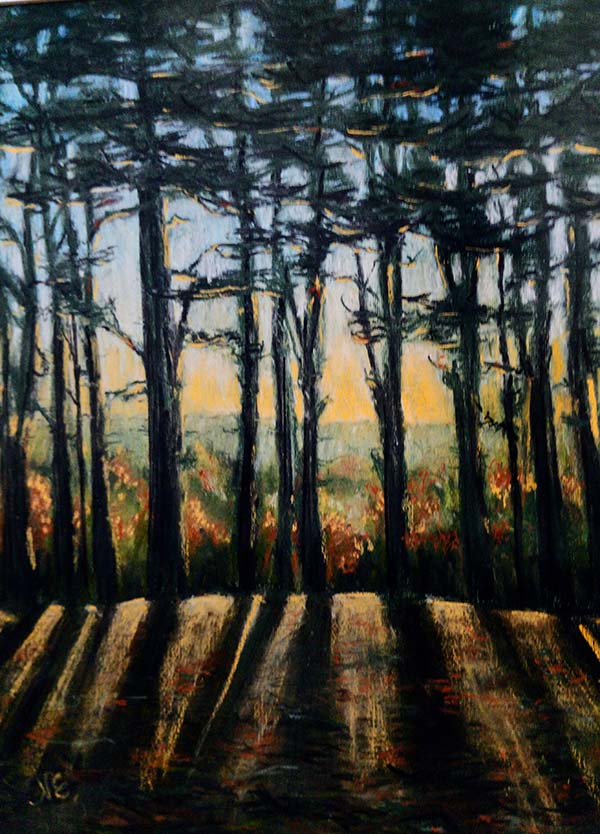 'Evening Glow in the woods' by Natasha Etchells of Porthmadog u3a