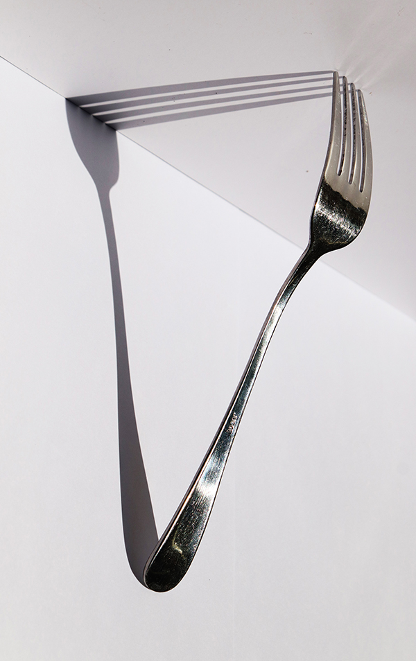 'Fork shadow' by Jonathan Ruddle of Hartley Wintney & District U3A